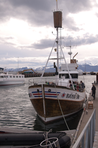 Our whale watch boat