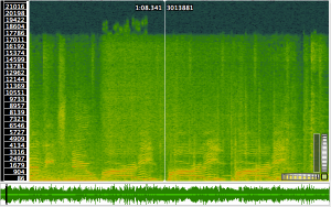 "Spectrogram of ""party, party, party"". Note high frequency excursions on the first instance."
